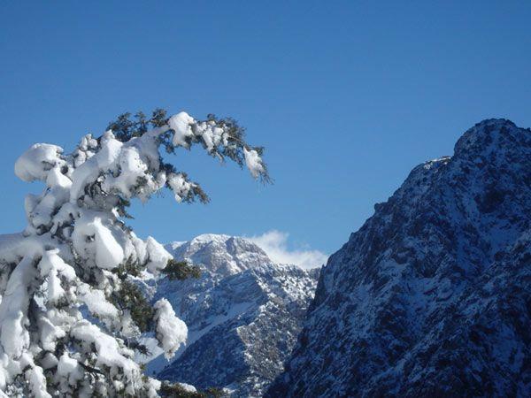 montañas blancas invierno