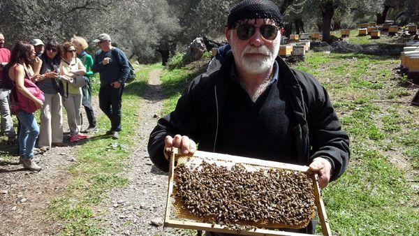 viaje creta 2016 actividades apicultor