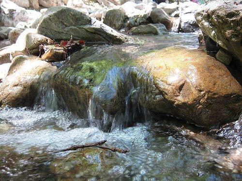 rio agia irini primavera