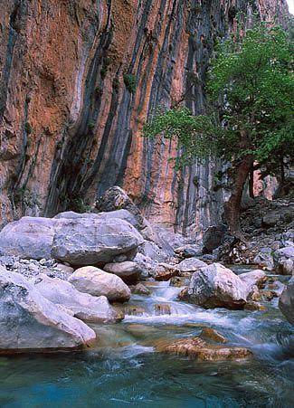 samaria rio